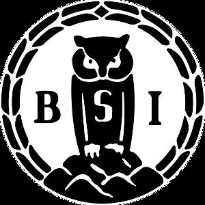 bsi_small